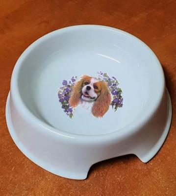 Porcelánová miska pro psy King Charrles Španěl