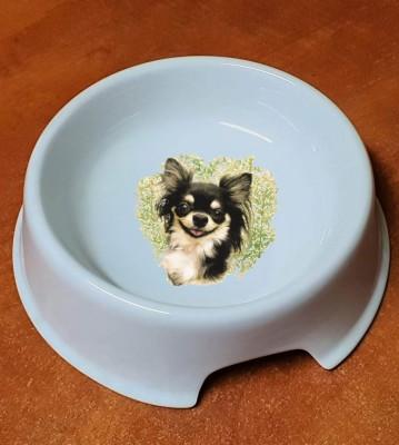 Porcelánová miska pro psy Čivava