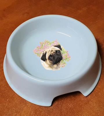 Porcelánová miska pro psy Mops