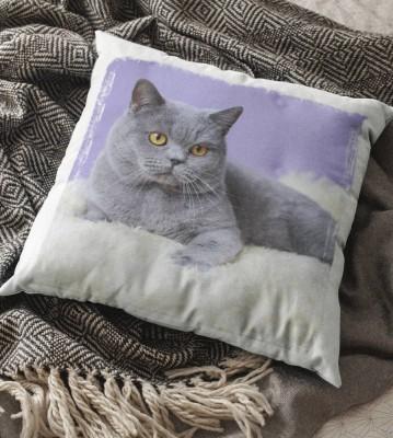 Polštář Kočka 3