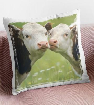 Polštář Krávy