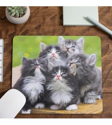 Podložka pod myš Koťata 1