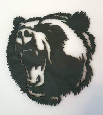 Medvěd hlava obraz