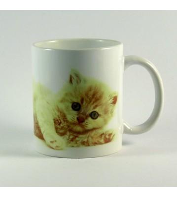 Hrnek Kotě